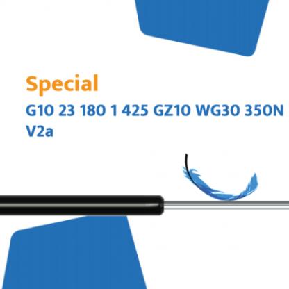 Hahn gasveer G10 23 180 1 425 GZ10 WG30 350N RVS304